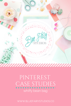 Pinterest Case Study: Whiffy Bean Bag